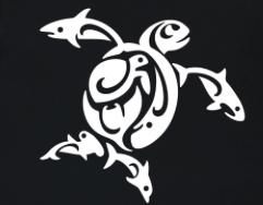 TIRN turtle image